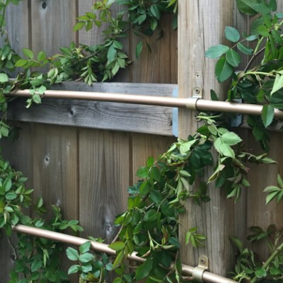 Spring Garden Clean Up + Inexpensive DIY Pipe Trellis