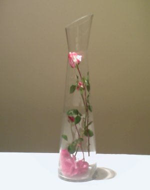 A quick idea to use your roses in a vase that looks really good