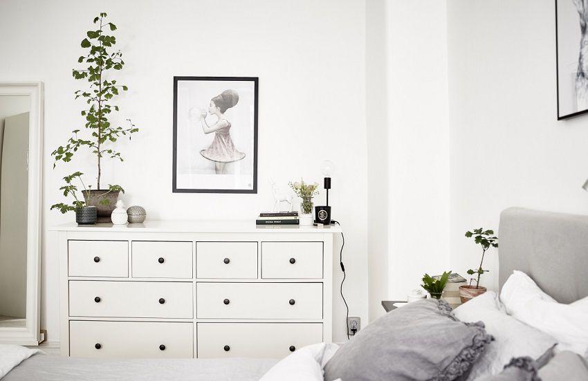 Piante e fiori in camera da letto ecco perch s house mag - Piante per camera da letto ...