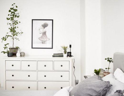 piante fiori camera da letto 5