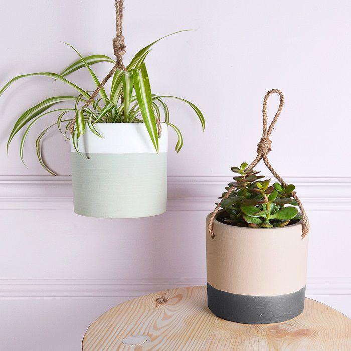 vasi appesi piante