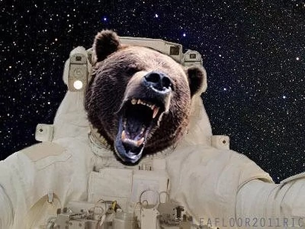 Female space marines would attract space bears.