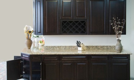 Best Kitchen Cabinet Doors Replacement Suggestions and Ideas
