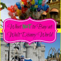 What Not to Buy at Walt Disney World