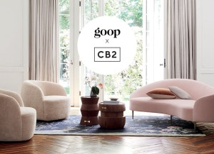 Goop-vs-CB2
