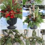 20 Beautiful Winter Planter Ideas House Of Hawthornes