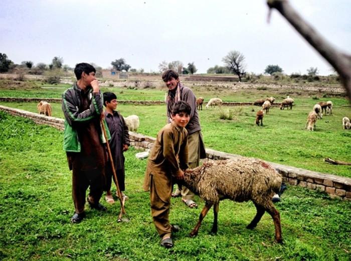 Sony-World-Photography-Awards, Pakistan, young talent,Pakistani photographers, zohaib tariq