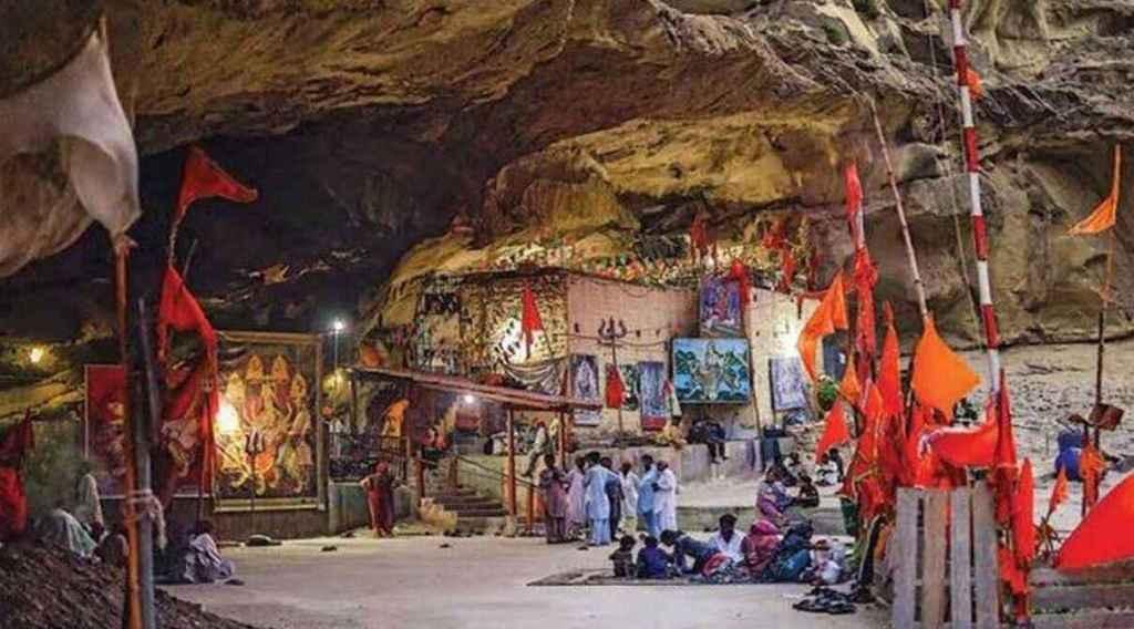 Arrowroot, Sukkur, Sindh
