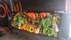 memphis decorated cooker