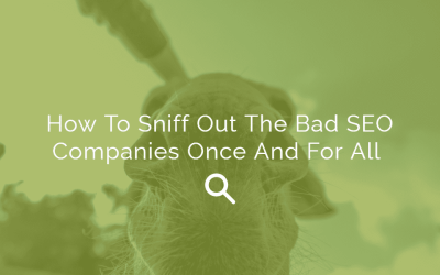 How To Sniff Out The Bad SEO Companies Once And For All