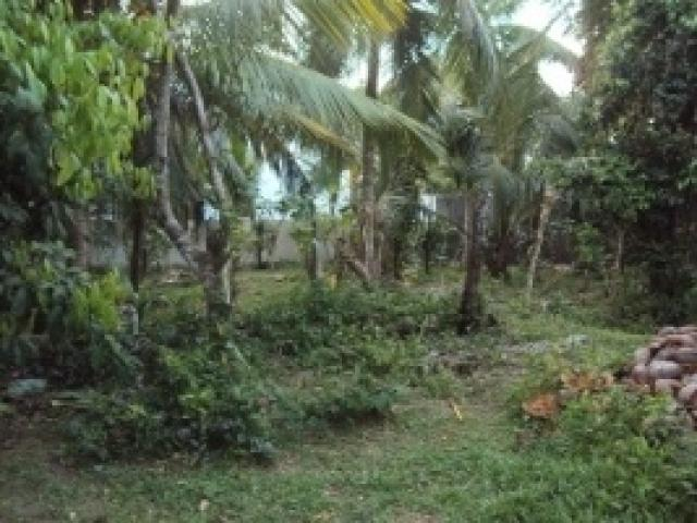 Property Is Located In Makumbura Kottawa 150 Meters To