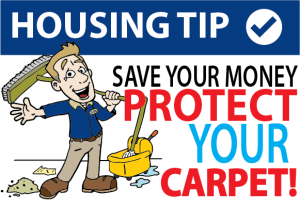 Save Your Money. Protect Your Carpet!