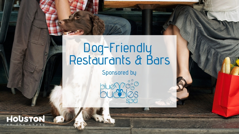 best dog friendly restaurants and bars