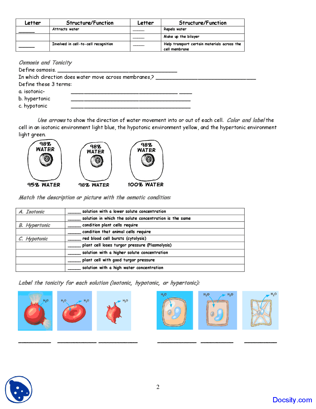 Osmosis And Tonicity Worksheet Answers Free Worksheets