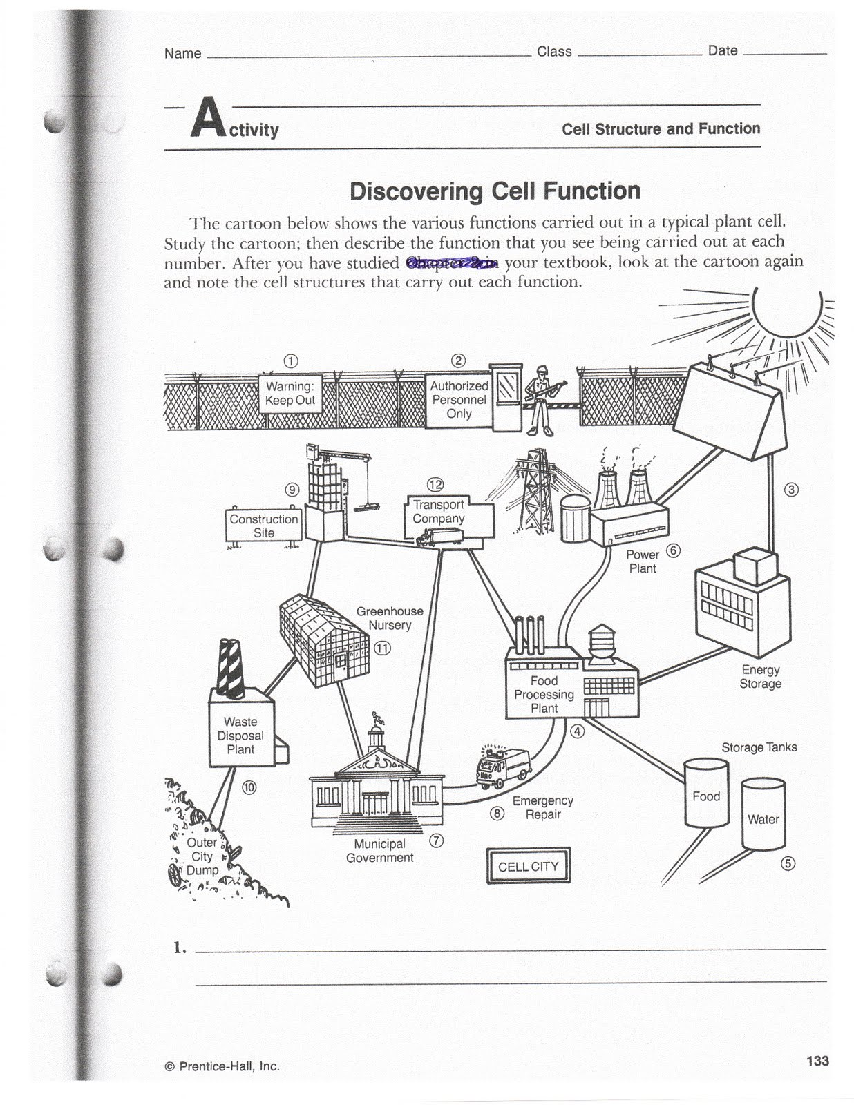 Drden 039 S Science Class April Cell Cityogy Free Worksheets Samples