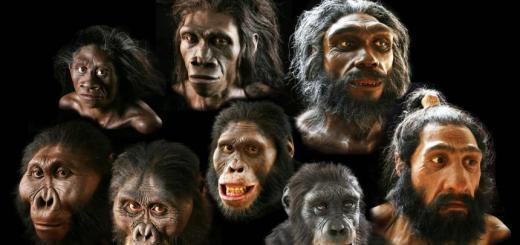 human body mutations
