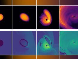 Black hole gravity