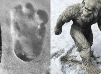 Bigfoot Found In the Himalayas/