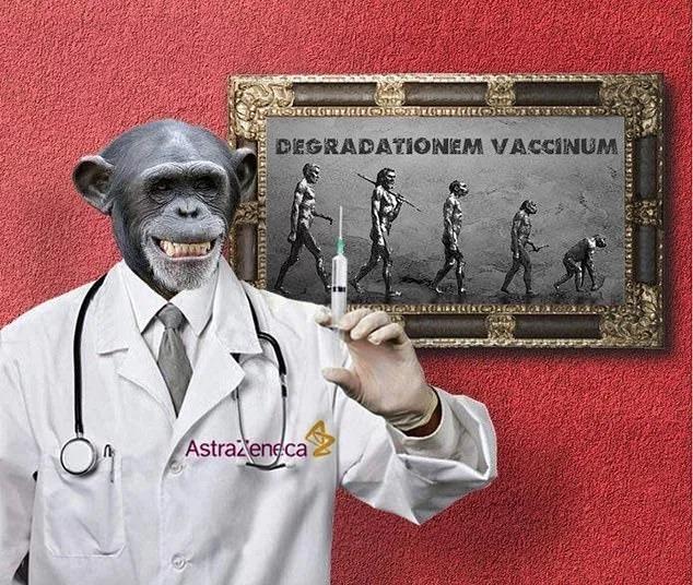 coronavirus monkey vaccine