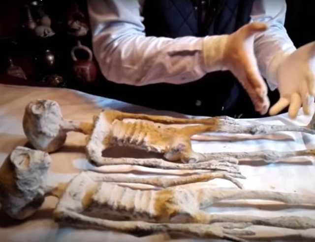 three-finger mummies