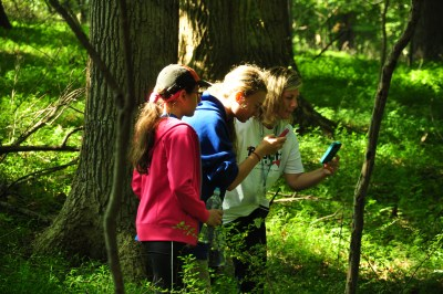 Students work with scientists to observe organisms, record data, and share results on iNaturalist during the fall student BioBlitz at the Howard County Conservancy - Belmont