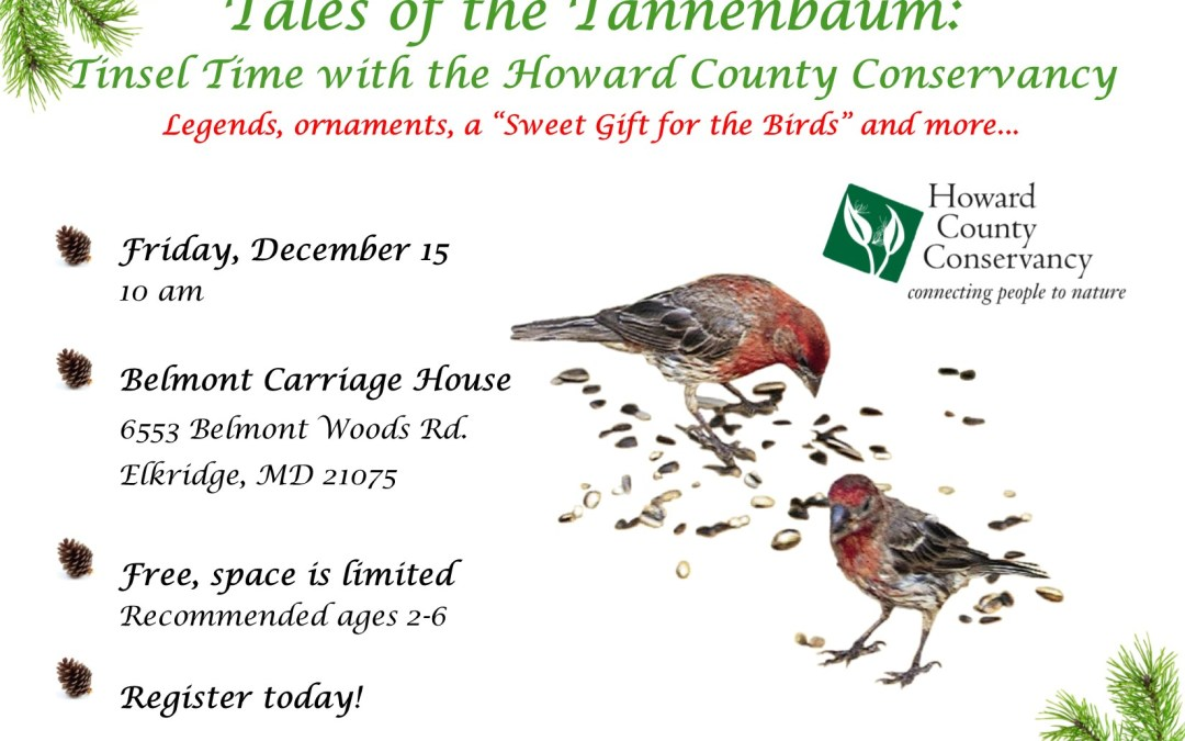 Tales of the Tannenbaum: Tinsel Time with the Howard County Conservancy
