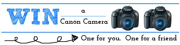 fb camera header3