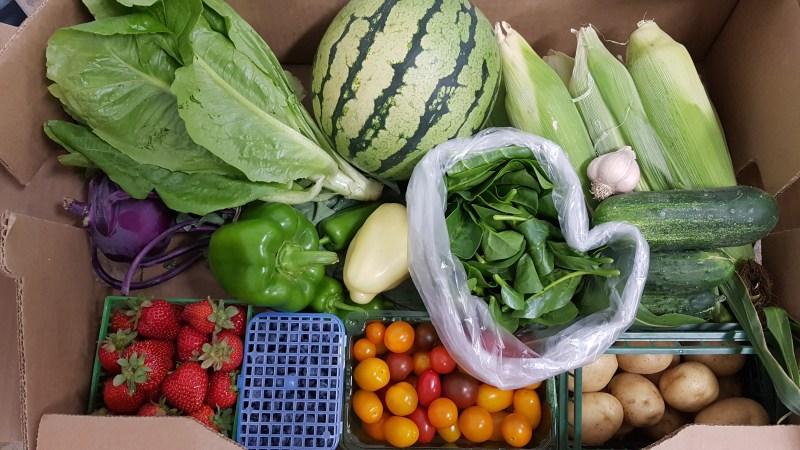 good food box vegetables