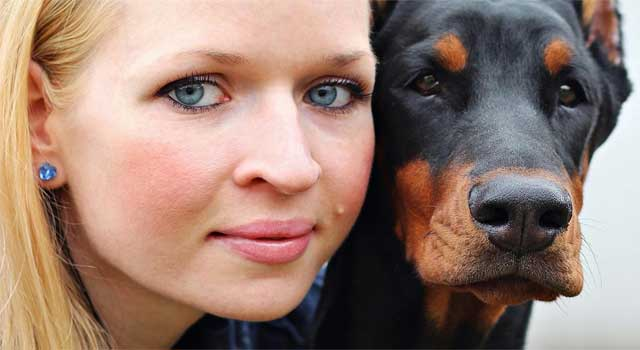 How Do Dogs Fleas Affect Humans
