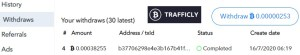 trafficly payment proof