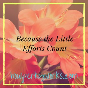 because-the-little-efforts-count