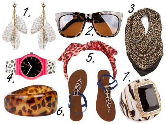 Animal Print Overload: Leopardy Accessories Under $50! 15