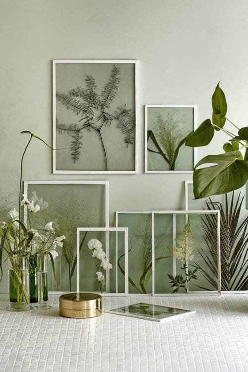 2017 Decor Trends: Botanical Spaces 4