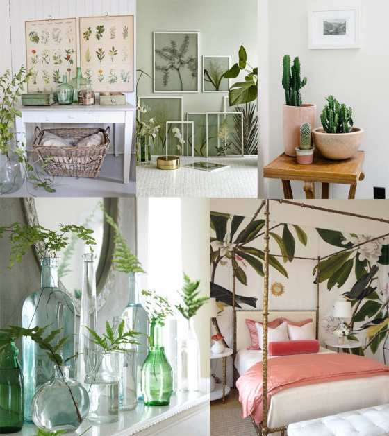 2017 Decor Trends: Botanical Spaces 1
