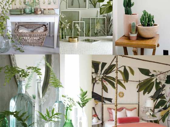 2017 Decor Trends: Botanical Spaces 6