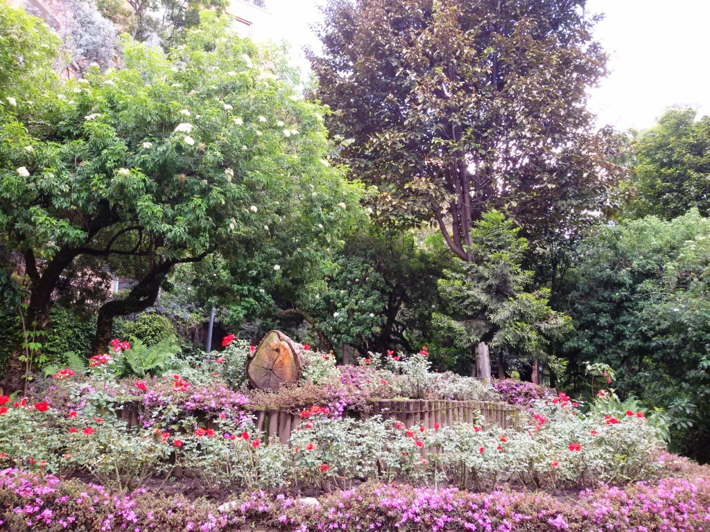 Bogota nature flower garden