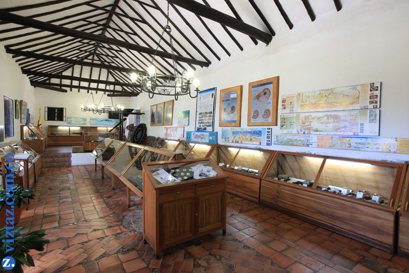 Museo Paleontologico Villa de Leyva