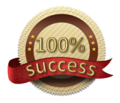 100% success badge