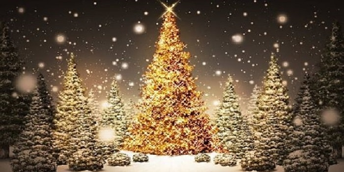 Il saluto prima di andare a dormire è importante, infatti non dobbiamo mai dimenticarci di inviare un link di buona notte su whatsapp e facebook. Le Piu Belle Frasi Per Gli Auguri Di Natale