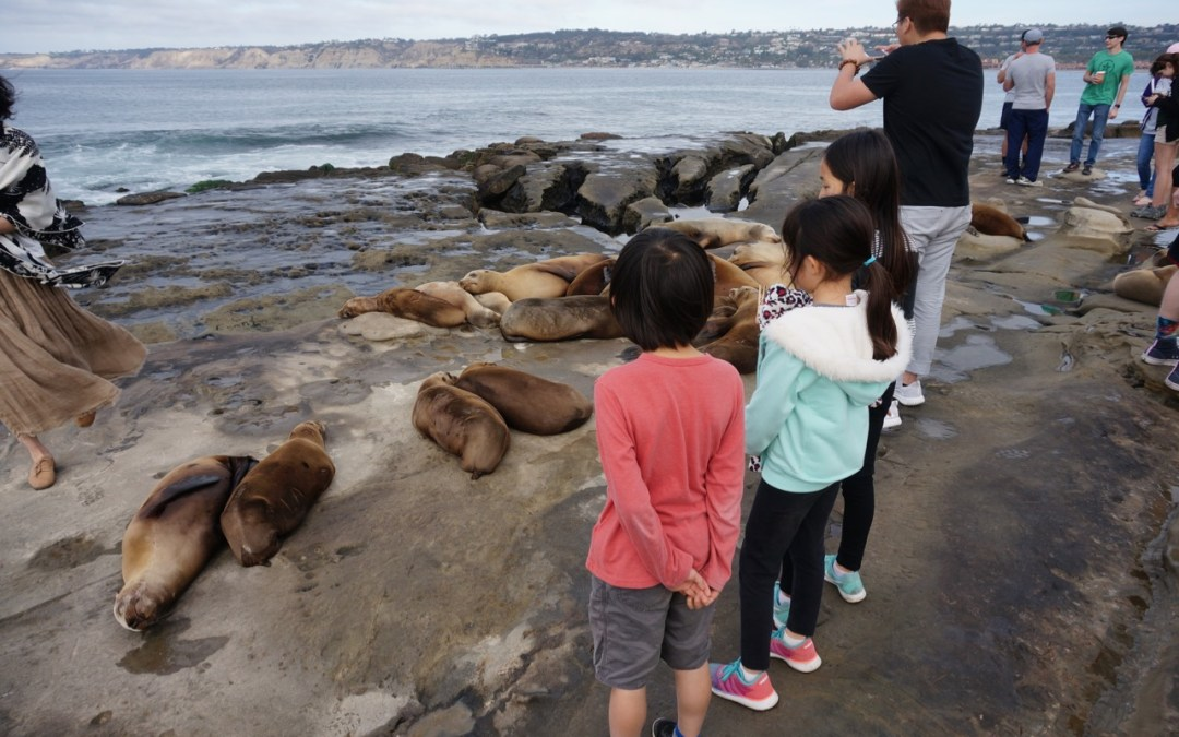 Road Trip Journal December 1, 2 & 3 – Old Schoolmates from Korea in Phoenix & San Diego