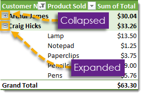 Pivot-Table-with-Expand-and-Collapse-Buttons 101 Advanced Pivot Table Tips And Tricks You Need To Know