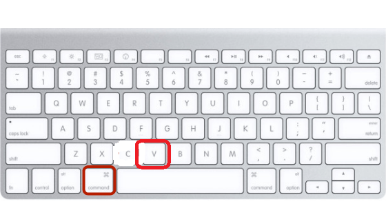 How To Copy And Paste On A Macbook