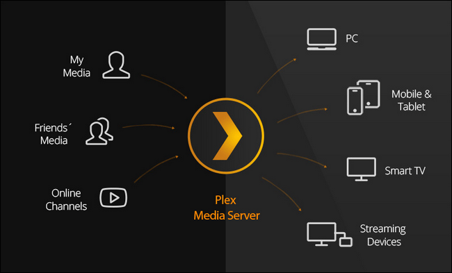 How does Plex work
