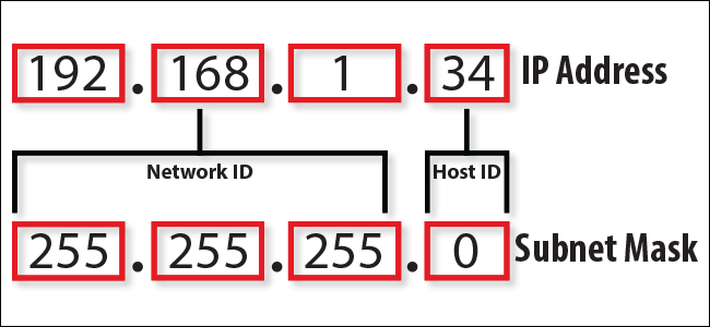 Everything You Need To Know About An IP Address