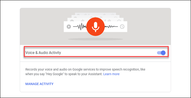 Voice & Audio Activity dialog with box around toggle