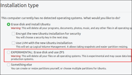 ZFS option on the partition choices screen