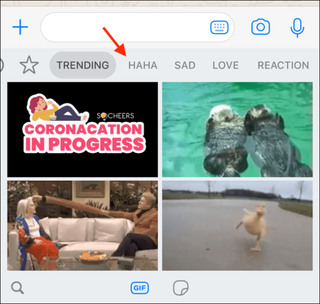 Switch to different GIF collections