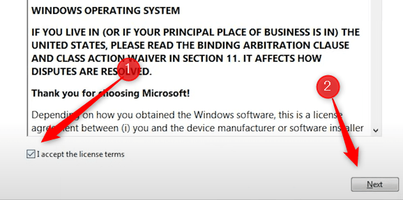 Accept the license terms and then click Next.
