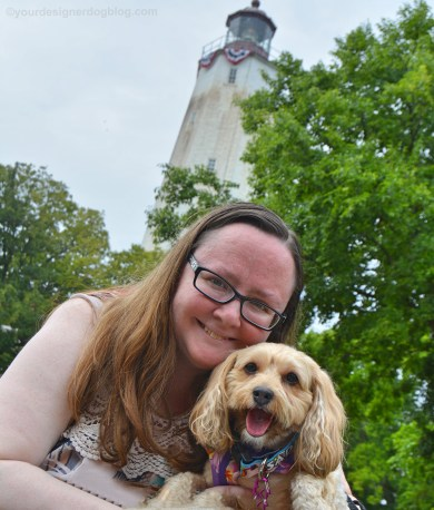 mary ditosto, author photo, sadie, yorkipoo