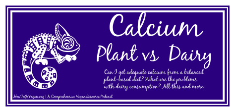 How to go vegan Calcium header1